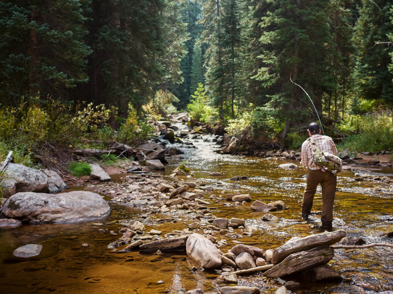 Fly fishing in Vail and Beaver Creek