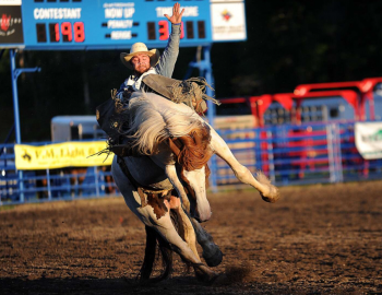 Steamboat Rodeo Returns