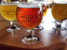 Mountain Tap Brewery Steamboat