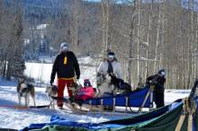 steamboat dog sledding with kids