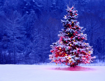 Steamboat Christmas Day 2020 Spending the holidays in Steamboat Springs | Mountain Mover Blog