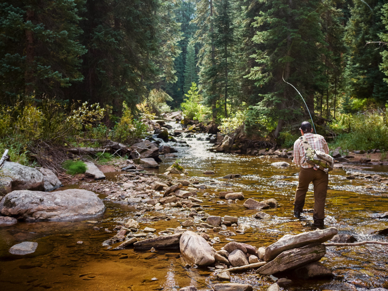fishing in vail and beaver creek