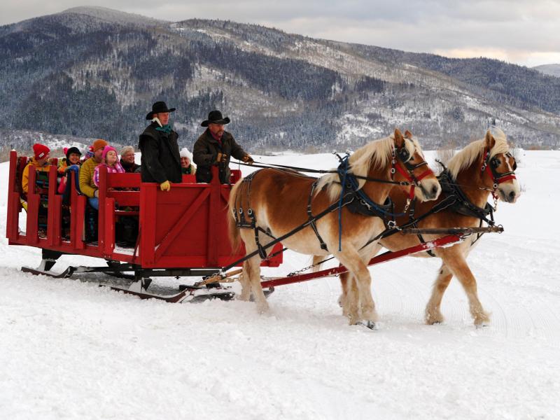 haymaker sleigh ride