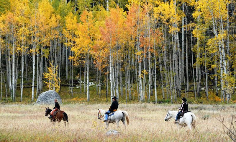 steamboat horseback | Moving Mountains