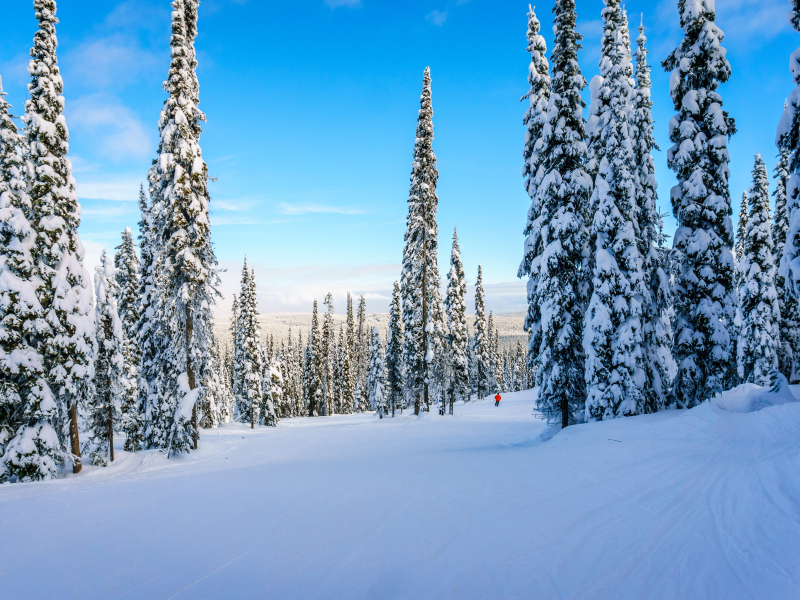 Steamboat Snow | Moving Mountains